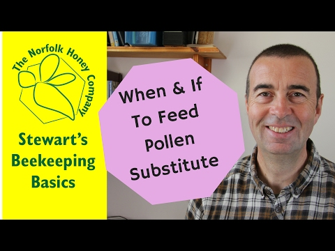 When & If to feed Pollen Substitute - #Beekeeping Basics - The Norfolk Honey Co.
