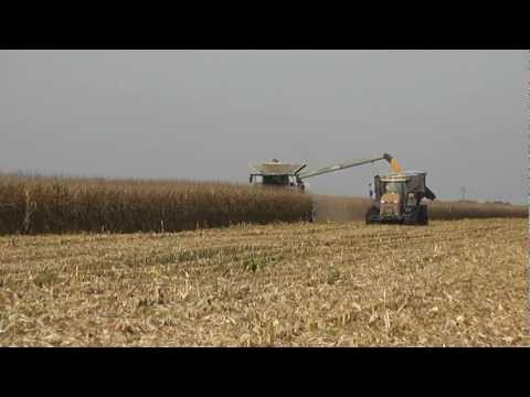 Corn Harvest ! Claas Lexion 770TT & 750 With 2 Challenger MT865