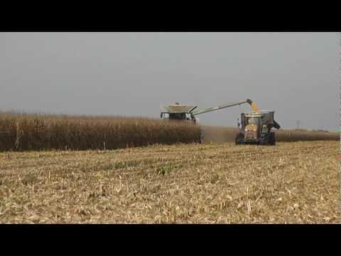 Corn Harvest ! Claas Lexion 770TT & 750 With 2 Challenger MT865