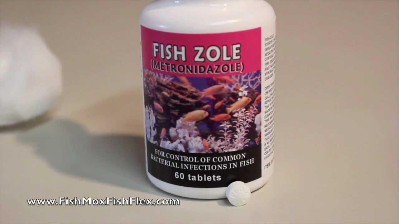Fish zole metronidazole 250 mg fish antibiotic youtube for Metronidazole for fish