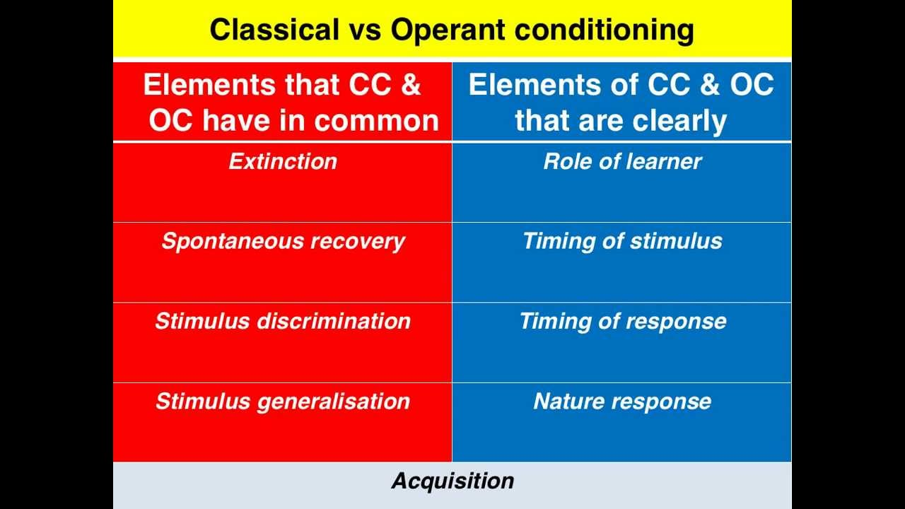compare contrast operant classical conditioning Classical and operant conditioning share many of the same basic principles and procedures for example, kimble (1961) has pointed out that the basic principles of acquisition, extinction.