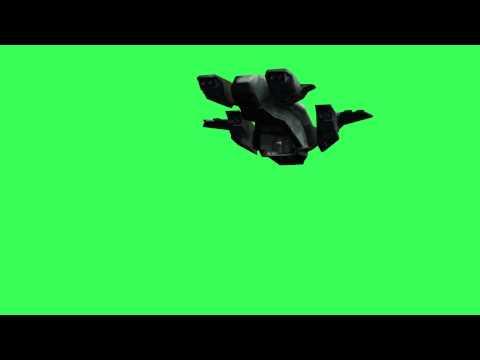 pelican landing - free Green & Blue Screen - Chroma key Effect