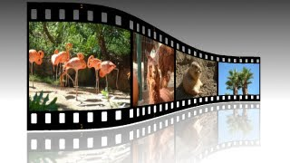 GIMP 2.8 Tutorial For Beginners Filmstrip Photos