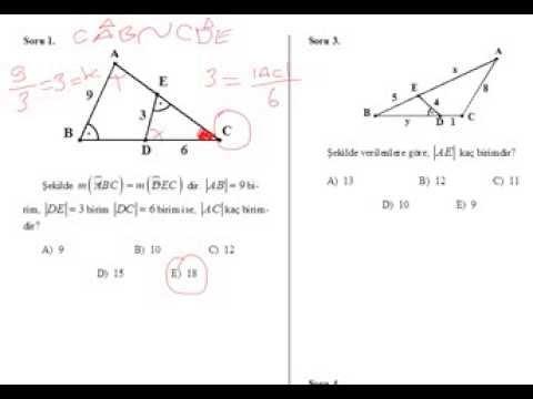 Üçgende Benzerlik Soru Çözümü Videosu