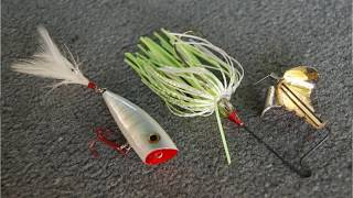Topwater Bass Fishing Tips How To Catch Bass On Topwater
