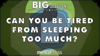 How Much Should You Sleep?