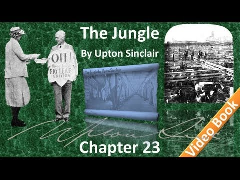 Chapter 23 - The Jungle by Upton Sinclair
