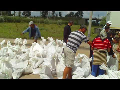 Matca - Echipa la constructia digului de la Galati