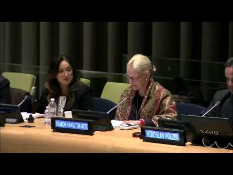 UN System Partnering with Civil Society  - IAAI/GloCha Side Event to OWG6