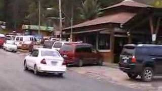 The Sights And Sounds Of Bo. Guavate, Cayey, Puerto Rico
