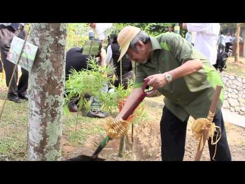 world bamboo day malaysia 2013 HIGHLIGHTS