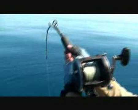 Insane Reef Fishing Action 8 Way Hookups on Large Nannygai