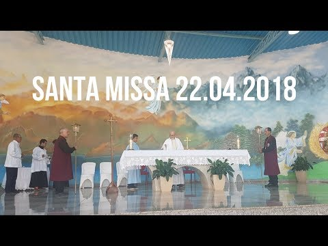 Santa Missa | 22.04.208 | 4° Domingo da Páscoa | Padre José Sometti | ANSPAZ