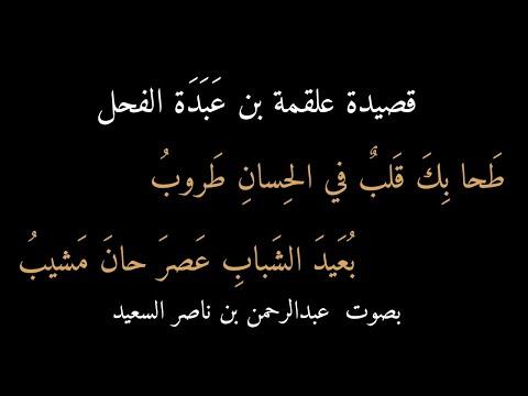 قصيدة علقمة بن عَبَدَة الفحل: طحا بك قلب في الحسان طروب، بصوت عبدالرحمن السعيد