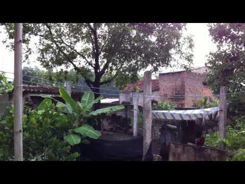 Bac Giang house