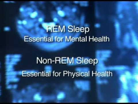 Sleep and Wellness