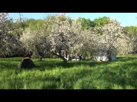 """Фестиваль """"Тавале"""" (03.05.2014) - 00117"""