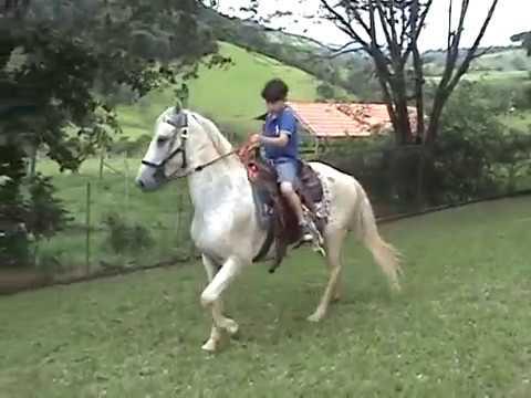 Spirit - O Cavalo Marchador