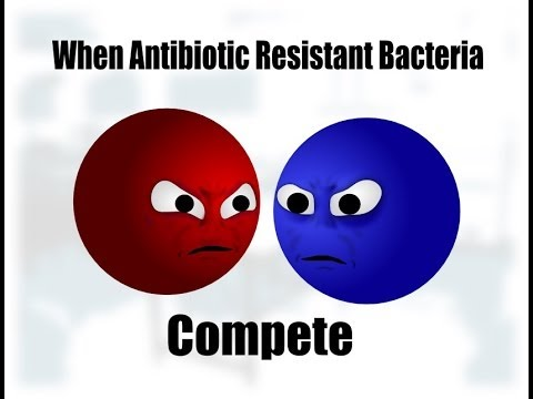 When Antibiotic Resistant Bacteria Compete