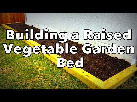 How We Built Our Raised Vegetable Garden Bed