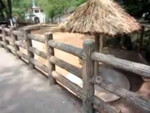 Gia đình Teen Vip đi chơi Thảo Cầm Viên :))