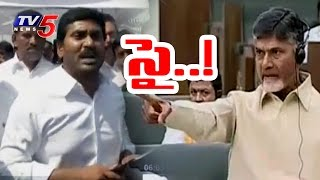 CM Chandrababu Challenges YS Jagan Over Agri Gold Scam | AP Assembly
