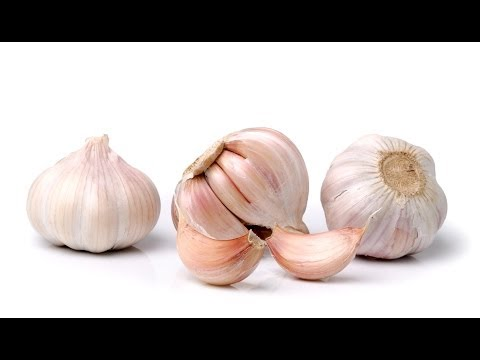 Are Garlic and Spices Health Foods or Poisons?