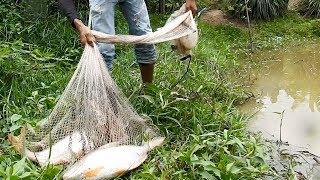 Khmer Fishing At Siem Reap Cambodia -Cambodia Traditional Fishing