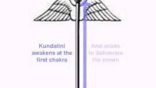 Kundalini Awakening In Yoga Meditation
