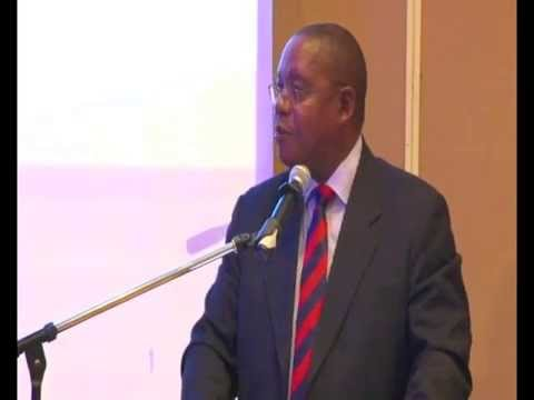 Reginald Motswaiso - Lessons from Chinese EximBank's Investment in Botswana's Housing