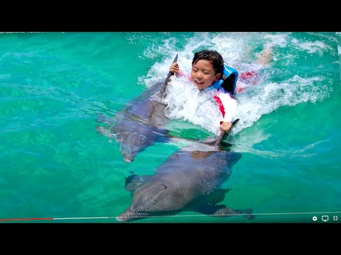 Steven Cancun Vacation 2015