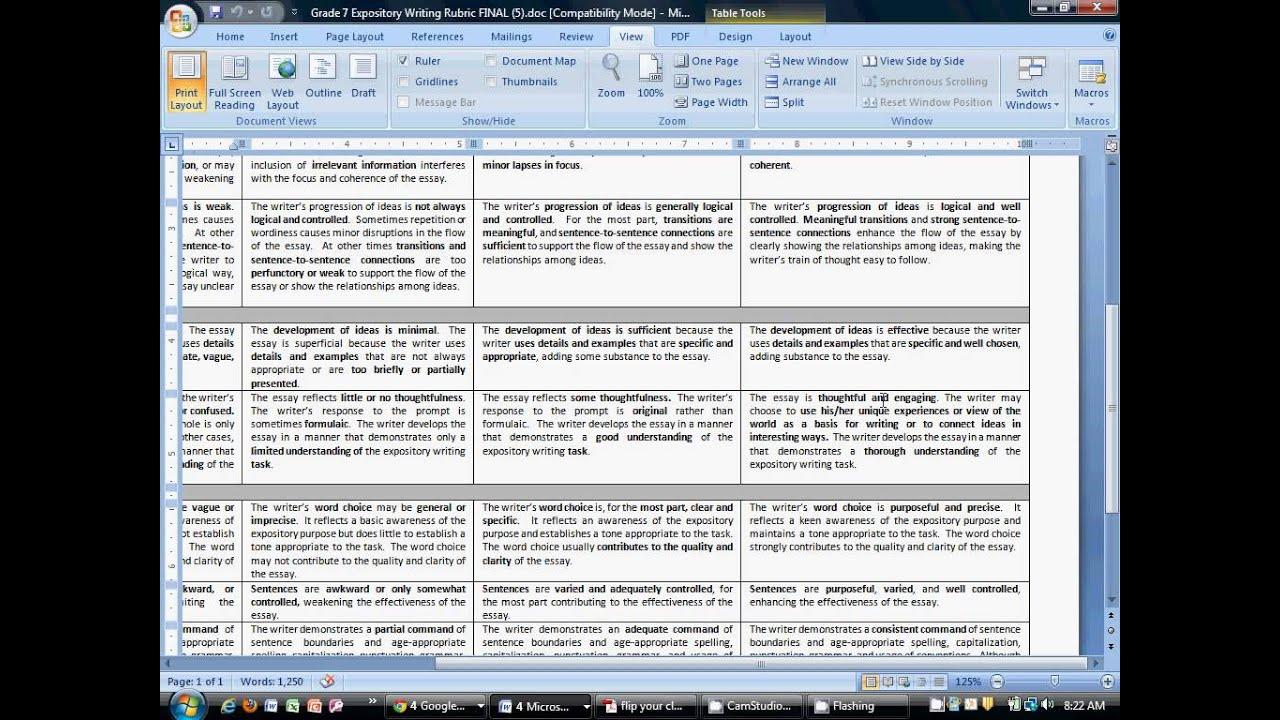 expository essay doc