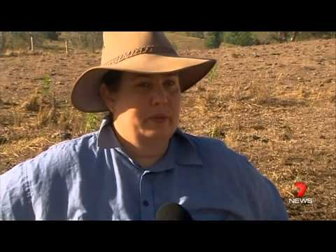 Queensland suffers biggest drought on record