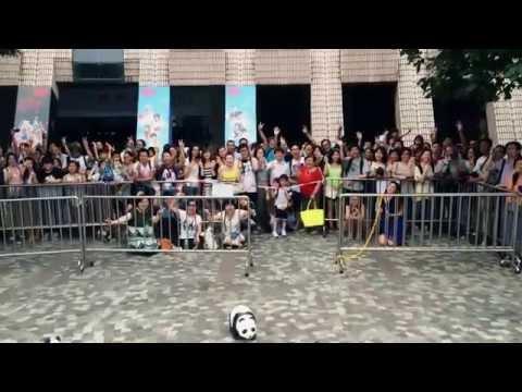 """""""1600 Pandas World Tour in Hong Kong: Creativity Meets Conservation"""""""