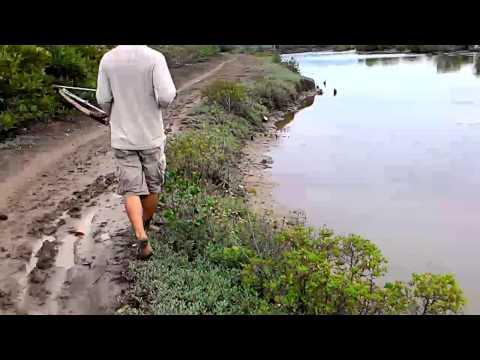 Bắn cá bằng nỏ