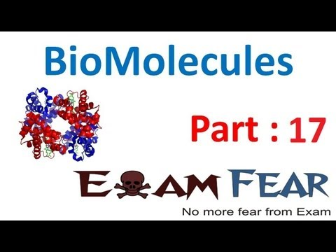 Chemistry Biomolecules part 17 (Fibrous & Globular Proteins) CBSE class 12 XII