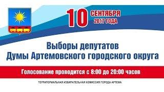 Голосуй «за»! В Артёме прошли выборы депутатов городской Думы