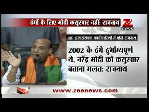 Zee News: Unfair to blame Narendra Modi for 2002 riots, says Rajnath Singh