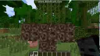 Minecraft: How To Make A Wither Skeleton Boss