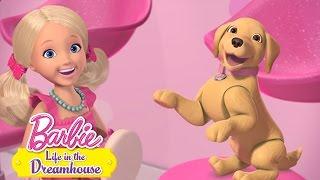 Barbie 56- Uštekaný biznis