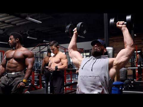 A DAY IN THE LIFE AT ZOO CULTURE par Bradley Martyn.