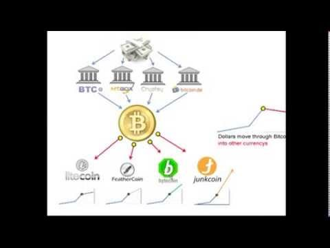 Bitcoin Investment... What now?  Tutorial DIVERSIFICATION Cryptocurrency Market
