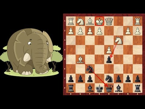Chess Traps #2: Elephant Trap in the Queens Gambit Declined - Opening Trap