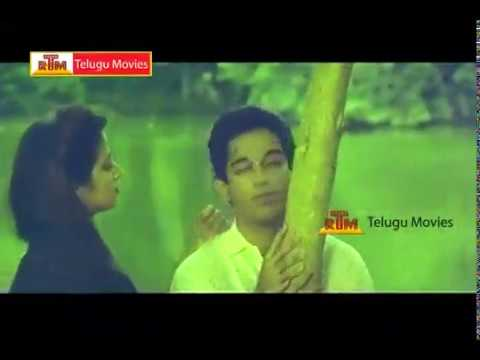 Chanakya Telugu Movie Scenes \ Kamal Hassan