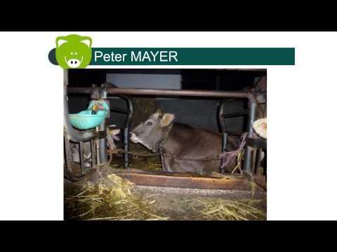 Landwirtschaft entfesseln! Pressekonferenz am 16.9.13 (Kurzversion)