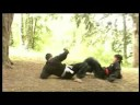 PENCAK SILAT - 5 experts 5 styles Vol 2