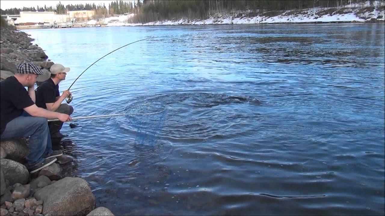 рыбалка за рыбалкой швеция