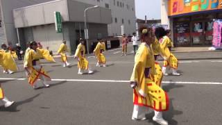 kusumiyosakoi