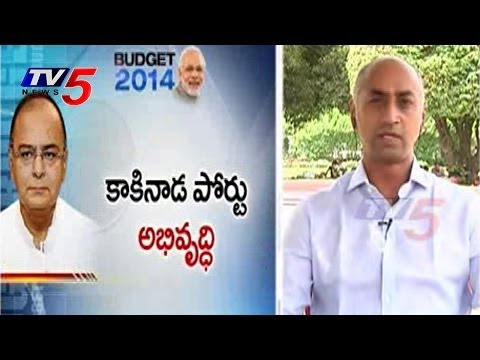 TDP MP Galla Jayadev Response on Budget 2014 : TV5 News