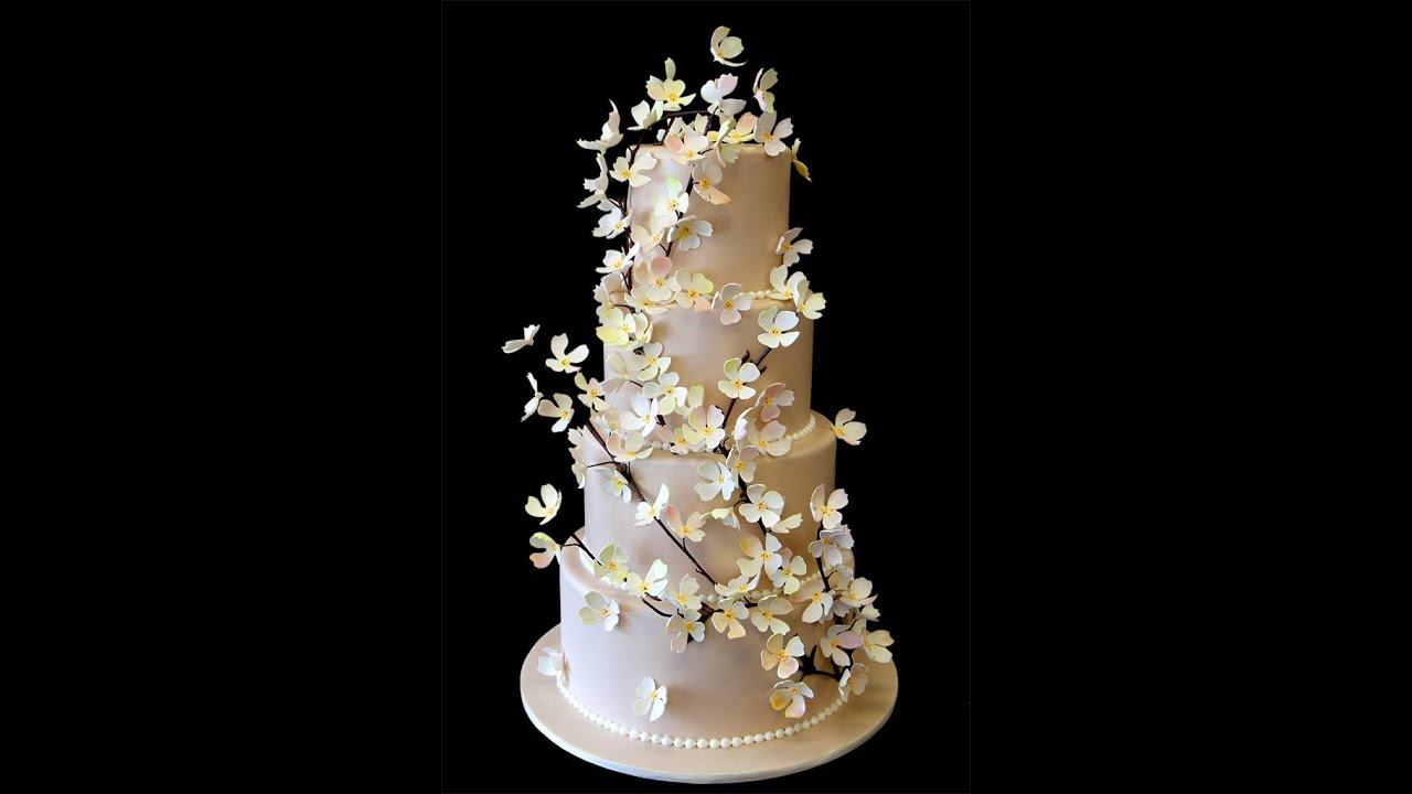 Champagne Dogwood Wedding Cake YouTube